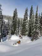 A pair of male snowmobilers carve up fresh powder on a glorious day in the Stock Photos