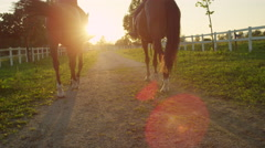 SLOW MOTION: Two blonde girls horseback riding brown horses into the sunset Stock Footage