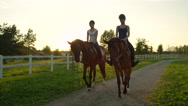 SLOW MOTION: Two smiling friends horseback riding brown horses at golden sunset Stock Footage