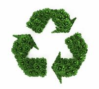 Green bushes forming recycle symbol. 3D illustration Stock Illustration
