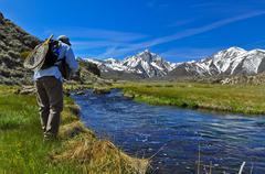Man fly fishing, Hot Creek, California, United States of America Stock Photos