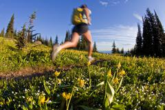 A young asian woman trailrunning beautiful singletrack in the the Trophy Stock Photos