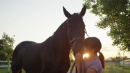 CLOSE UP: Charming happy little girl kissing beautiful big brown horse at sunset Stock Footage