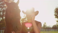 CLOSE UP: Portrait of cheerful senior cowboy saying hello and touching his hat Stock Footage