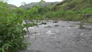 River Flows Between Mountains in Forest Nature Footage Stock Footage