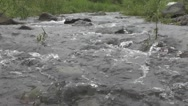 River Flows Over Rocks in Green Forest Stock Footage