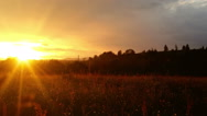 Magical sunset over green meadow at countryside, zoom out Stock Footage