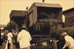 Big old Threshing machines  for wheat in operation Stock Footage