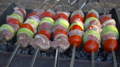 Barbecue With Meat On Grill Stock Footage
