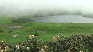 Mist over lake in forest. Fog over water surface. Foggy morning at forest lake Stock Footage