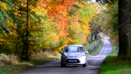 Car on a country lane in the woods Stock Footage