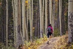 A young, fit woman trail running the Highline trail in Canmore, AB Stock Photos