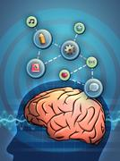 Active brain Stock Illustration