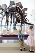 Girl and boy looking at dinosaur fossils at Royal Ontario Museum, Toronto, Kuvituskuvat