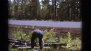 1968: a middle aged man picks up pieces of debris near the side of a road. Stock Footage