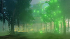 Magic lights in misty night forest 4K animation Stock Footage