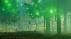 Magical forest at misty night 4K animation Stock Footage