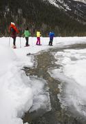 A group of cross country skiiers explore 'Jackman Flats' near Valemount, Stock Photos