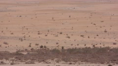 The Arava desert in South Israel. Lot's of arid dry yellow sand  Stock Footage