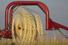 Crop rake Agricultural implement Stock Photos