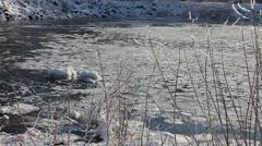 Raging stream water winter Stock Footage