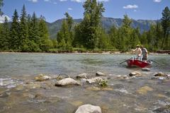 Middle-aged man fly-fishing on Elk River with fishing guide , near Fernie, East Kuvituskuvat