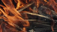 Flames of the fire. Burning fire. In the fire burn wood chips trees Stock Footage