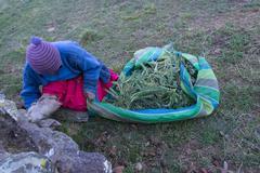 Local activities, Island of Amantani, Lake Titicaca, Peru Stock Photos