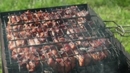 The meat on the grill. Meat is fried on coals. Camping. BBQ Stock Footage