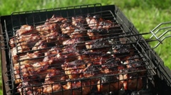 The coals in the grill. Meat is fried on coals. Camping Stock Footage