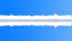 Drone, Low RP; Idling, ECU, MS Sound Effect