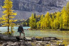A back packer pauses on the shore of Skoki Lake in the Skoki wilderness area of Stock Photos