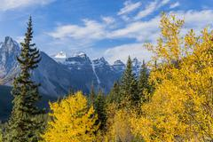 Fall colour, Valley of the Ten Peaks, Banff National Park, Alberta, Canada, Stock Photos