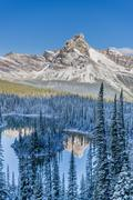 Cathedral Mountain reflected in Mary Lake, Yoho National Park, British Columbia, Stock Photos