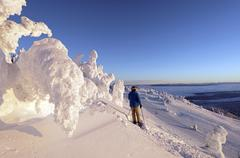 A skier rests among the snow ghosts while surveying the beautiful landscape at Stock Photos
