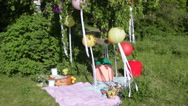 Picnic at park Stock Footage