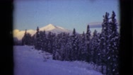 1946: view of snowy evergreen trees in front of a mountain ALASKA Stock Footage