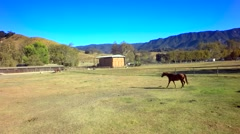 Horse trots across farm by mountains on sunny day slow motion Stock Footage