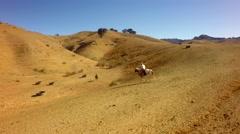Cowboy on horseback on mountain range on sunny day 5 Stock Footage