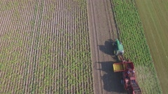 Aerial of potato harvest in field,Limburg,Netherlands Stock Footage
