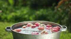 Apples in water. Apples are washed in a basin of water Stock Footage