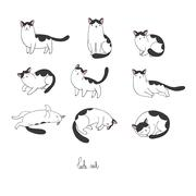 Set of different doodle poses cat. Pets Stock Illustration