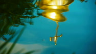 Church dome is reflected in the water Stock Footage