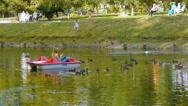 A pretty girl floats on a catamaran and feeding the ducks swimming near Stock Footage