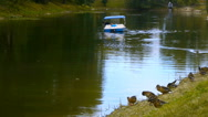 The man in the middle of the duck pond on a broken catamaran Stock Footage