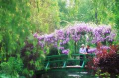France, Giverney - Monet's Garden - Diffuse woman on bridge with wisteria in Stock Photos
