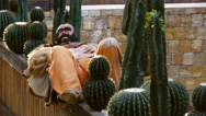 The mannequin of Mexican amigo lies in the middle of cactus Stock Footage
