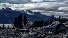 Dark and Eerie Mountain Time Lapse with Moose Antlers Stock Footage