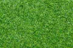 Artificial grass background,Green grass soccer field background Stock Photos