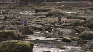 People Playing on River Rocks and Dog Slow Motion Stock Footage